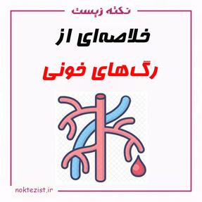 خلاصه فصل ساختار رگهای خونی زیست شناسی دهم
